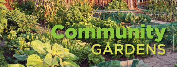 CommunityGardens-620x235.jpg