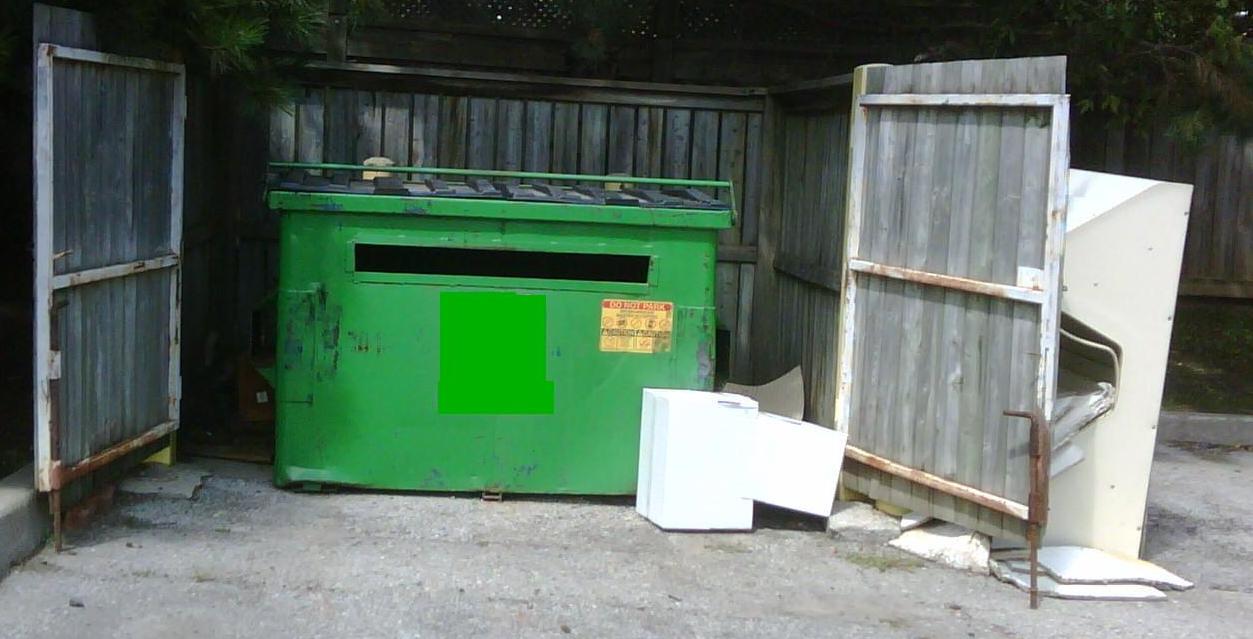 Picture of an unkept garbage bin